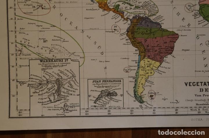 Arte: Mapa de la vegetación en el Mundo, 1866. Perthes - Foto 4 - 121855163