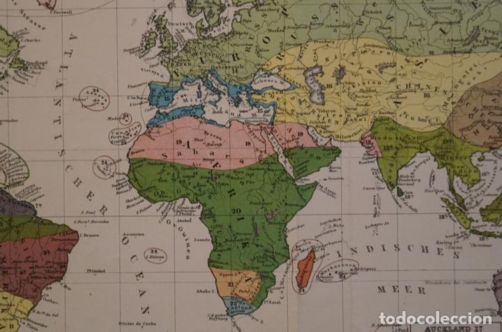Arte: Mapa de la vegetación en el Mundo, 1866. Perthes - Foto 6 - 121855163