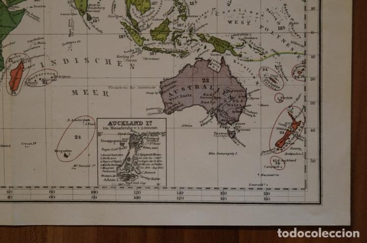 Arte: Mapa de la vegetación en el Mundo, 1866. Perthes - Foto 7 - 121855163