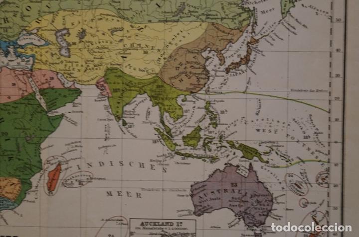 Arte: Mapa de la vegetación en el Mundo, 1866. Perthes - Foto 8 - 121855163