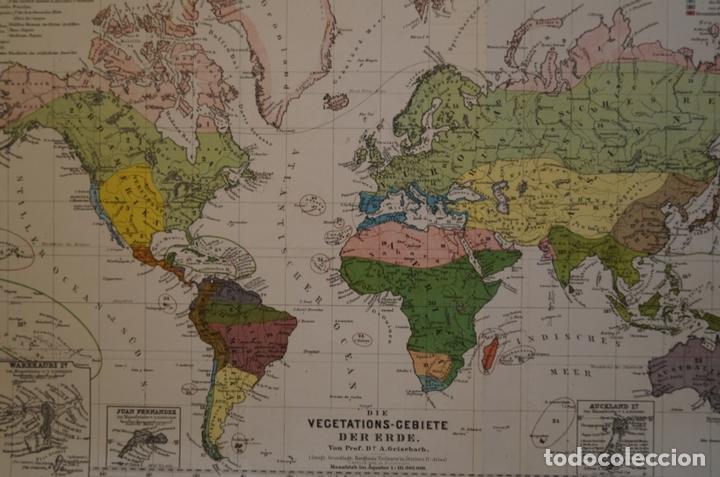 Arte: Mapa de la vegetación en el Mundo, 1866. Perthes - Foto 12 - 121855163