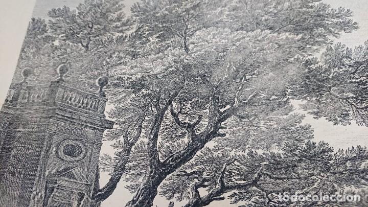 Arte: ANTIGUO GRABADO CARTOGRAFIA CIUDAD Y PUERTO DE TOULON SELLADA POR EL MUSEO LOUVRE - Foto 4 - 177117010
