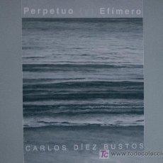 Arte: CARLOS DÍEZ BUSTOS / PERPETUO (Y) EFÍMERO. PINTURA. * A ESTRENAR *. Lote 14515307