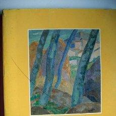 Arte: LIBRO CATÁLOGO SOBRE VAZQUEZ DIAZ. Lote 26326086