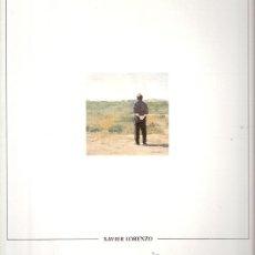 Arte: XAVIER LORENZO. PINTURA I DIBUIX. CENTRE CULTURAL D'ALCOI (ALCOY). DICIEMBRE 1991.. Lote 30587848