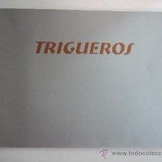 Arte: CATALOGO EXPOSICION - TRIGUEROS - DICIEMBRE 1999 - GALERIA BENEDITO MALAGA - 40 PAGINAS. Lote 35640997