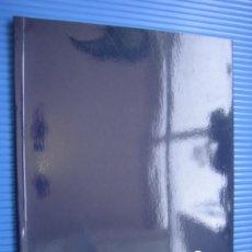 Arte: CATALOGO DE ARTE DANIEL MERINO. CORDOBA 1995. Lote 37174306