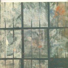 Arte: ÁGUEDA DE LA PISA (PALENCIA,1942). GALERÍA ALBATROS.MARZO-ABRIL 1992.INTRODUCCIÓN:JUAN MANUEL BONET.. Lote 45980482