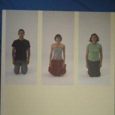 Arte: EL PUENTE DE LA VISION 2006 (SANTANDER Y SANTILLANA DEL MAR). Lote 52746622