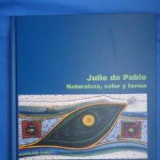 Arte: JULIO DE PABLO . NATURALEZA,COLOR Y FORMA. SU VIDA Y OBRA. 194 PÁGINAS. Lote 53018277