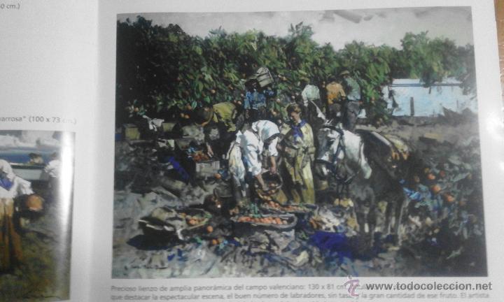 Arte: CATÁLOGO DE EXPOSICIÓN EUSTAQUIO SEGRELLES EN ZÚCCARO. FIRMADO. - Foto 7 - 54491624