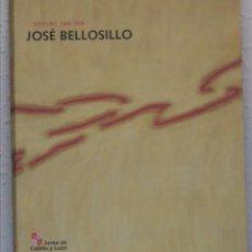 Arte: JOSÉ BELLOSILLO, PINTURA 1988-1998. JUNTA DE CASTILLA Y LEÓN, 1999. Lote 54581137