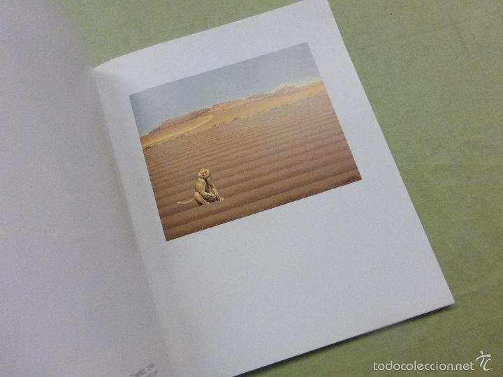 Arte: Isabel Villar obra 1977-2000 - .Junta de Castilla y León - Foto 5 - 57874173