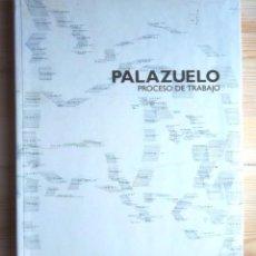 Arte: PALAZUELO PROCESO DE TRABAJO MACBA GUGGENHEIM BILBAO 2006-2007 MANUEL BORJA VILLEL CATÀLEG CATÁLOGO. Lote 129024787