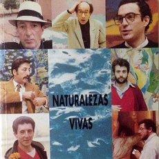Arte: NATURALEZAS VIVAS (CARLOS ALCOLEA; MANOLO QUEJIDO; LUIS GORDILLO; PEREZ VILLALTA; ETC.). CATÁLOGO . Lote 60650951