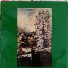 Arte: AGUSTIN DE RIANCHO. MUSEO DE BB AA DE SANTANDER JUNIO 1973. 117 PP.. Lote 79886373