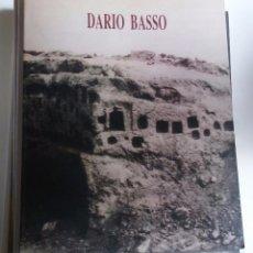 Arte: DARÍO BASSO /// CALVO SERRALLER, FRANCISCO (TEXTO). Lote 93758705