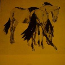 Arte: RICARD ARENYS. PINTURAS. CABALLOS. SALA GASPAR. BARCELONA. 1966. . Lote 96952743