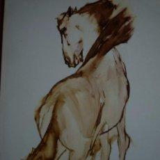 Kunst - RICARD ARENYS. PINTURAS. DIBUJOS. GOUACHES. ACUARELAS. CABALLOS. SALA GASPAR. BARCELONA. 1978. - 96953151