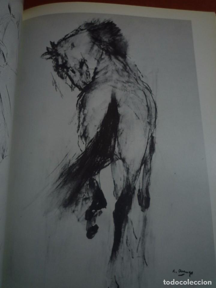 Arte: RICARD ARENYS. PINTURAS. DIBUJOS. GOUACHES. ACUARELAS. CABALLOS. SALA GASPAR. BARCELONA. 1978. - Foto 2 - 96953151