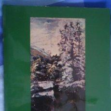 Arte: AGUSTIN DE RIANCHO. MUSEO DE BB.AA. DE SANTANDER 1973. 117 PÁGINAS. Lote 101376275