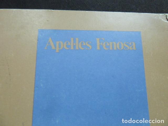 Arte: APELES FENOSA -CATALOGO- - Foto 6 - 130812056