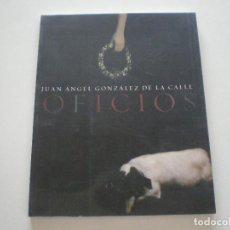 Arte: JUAN ANGEL GONZALEZ DE LA CALLE - OFICIOS -CAJA SAN FERNANDO 2003. Lote 135223506