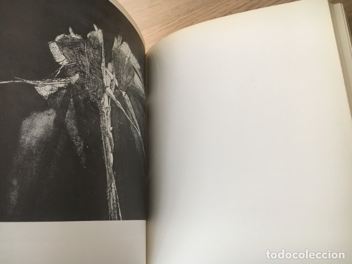 Arte: 1 Y 2 BIENAL NACIONAL DE ARTE CIUDAD DE OVIEDO. 1977 - Foto 2 - 140528242