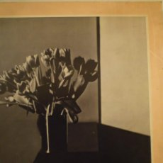 Arte: FOTOGRAFÍA. A BOOK OF PHOTOGRAPHS FROM THE COLLECTION OF SAM WAGSTAFF. GAY PRESS. 1978. Lote 141434582