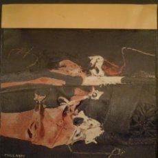 Arte: MANOLO MILLARES. CENTRO DE EXPOSICIONES Y CONGRESOS. ZARAGOZA. 1988. Lote 141796642
