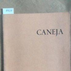 Arte: CANEJA, GALERIA THEO, 1968. Lote 147690990