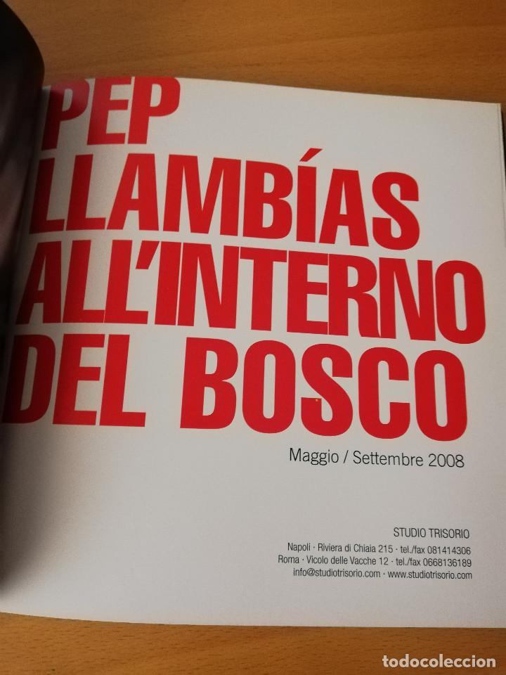 Arte: PEP LLAMBIAS ALLINTERNO DEL BOSCO (MAGGIO / SETTEMBRE 2008) - Foto 6 - 149836774