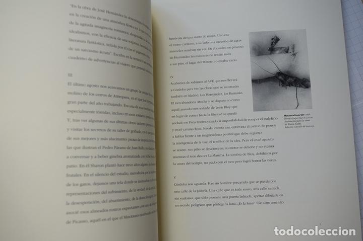 Arte: José Hernández (Tánger 1944-Málaga 2013) · Lote de 6 catálogos y 2 prospectos - Foto 18 - 150160702
