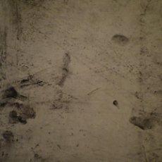 Arte: IGNASI ABALLÍ. PINTURES?. CENTRE DE LECTURA DE REUS. 1988. Lote 150258410