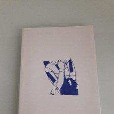 Arte: CUADERNO DE AZUCENA VIEITES - TEXTO GABRIEL VILLOTA - DIPUTACIÓN FORAL DE GUIPÚZCOA - 1998. Lote 152828522