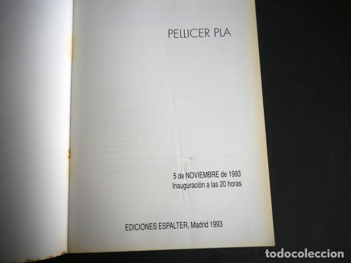 Arte: PELLICER PLA. CATALOGO. GALERIA ESPALTER MAJADAHONDA. NOVIEMBRE 1993. - Foto 2 - 153809970