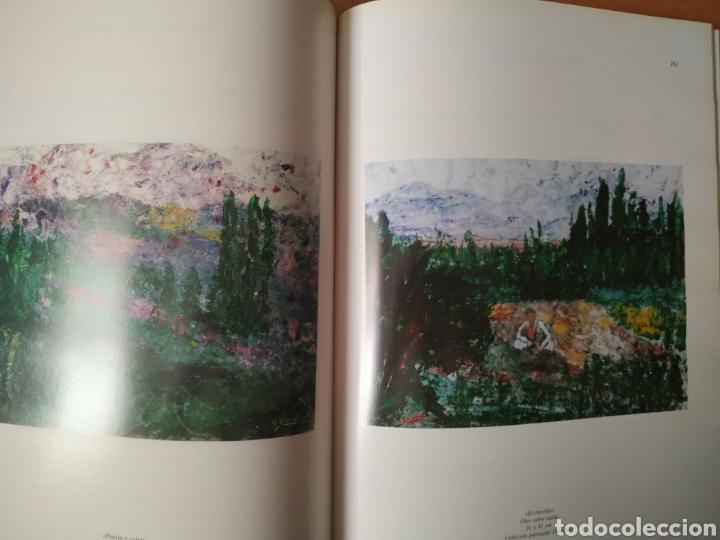 Arte: Libro del pintor Nelson Zumel, año 1993. Perfecto estado. - Foto 6 - 170408920