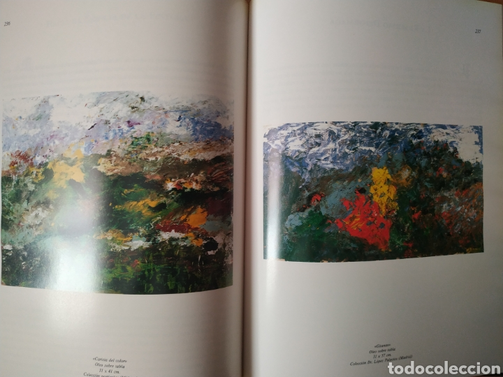 Arte: Libro del pintor Nelson Zumel, año 1993. Perfecto estado. - Foto 7 - 170408920