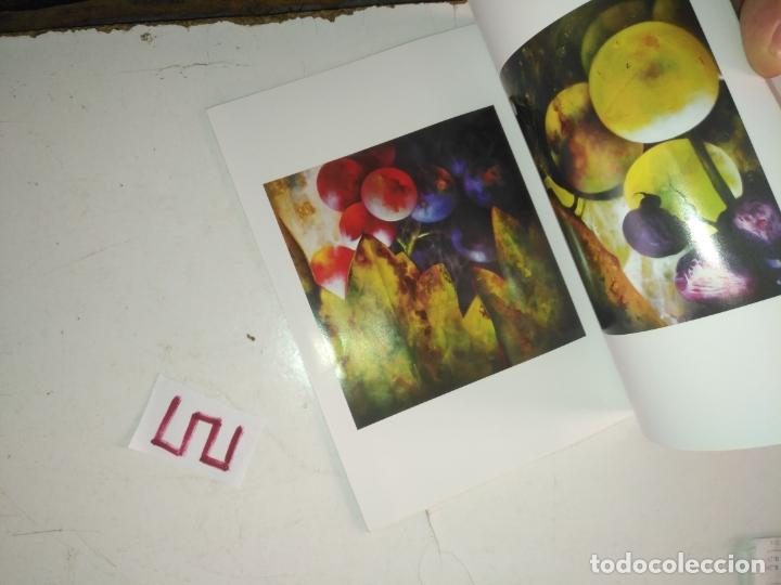 Arte: catalogo de arte . otra mirada . jose manuel reyes - Foto 5 - 182258825