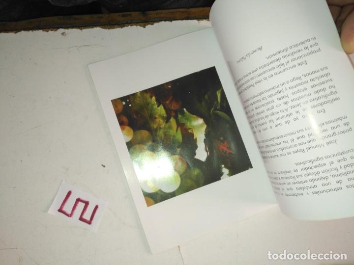 Arte: catalogo de arte . otra mirada . jose manuel reyes - Foto 9 - 182258825