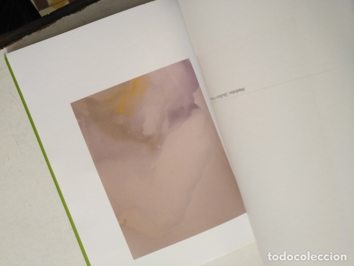 Arte: catalogo de arte - flores de otro mundo , elisa soria , jerez - Foto 4 - 182369737