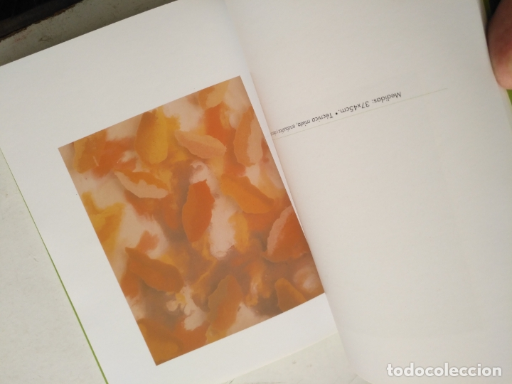 Arte: catalogo de arte - flores de otro mundo , elisa soria , jerez - Foto 7 - 182369737