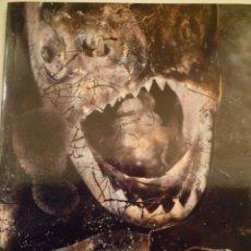 Arte: FOTOGRAFÍA. JOAN FONTCUBERTA. FROTOGRAMMES. CENTRE ÉTUDES CATALANES. 1988. Lote 182945546