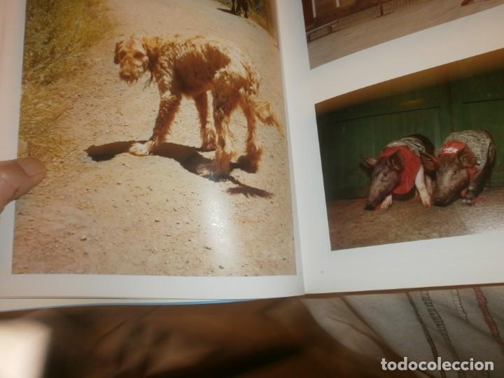 Arte: Cristóbal Hara Contranatura fotos catálogo exposición 2006 Madrid la Fabrica Editorial 32X24 111 pg - Foto 3 - 194195956
