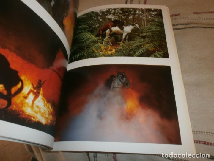 Arte: Cristóbal Hara Contranatura fotos catálogo exposición 2006 Madrid la Fabrica Editorial 32X24 111 pg - Foto 6 - 194195956