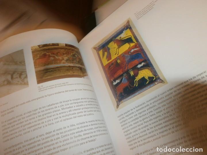 Arte: Taurus del mito al ritual Museo Bellas Artes de Bilbao 2010 medida 27 X 25 X 3,5 cm. 400 pg. - Foto 3 - 194197990