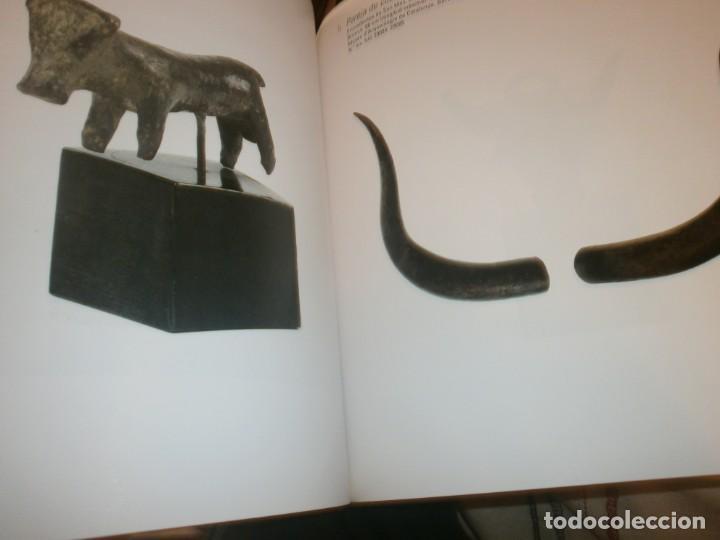 Arte: Taurus del mito al ritual Museo Bellas Artes de Bilbao 2010 medida 27 X 25 X 3,5 cm. 400 pg. - Foto 5 - 194197990