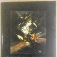 Arte: MANUEL VIOLA, FUNDACIÓN DÍAZ CANEJA, PALENCIA, MADRID, 2001,. Lote 196009878