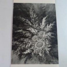 Arte: EXPOSICION JOSEP SABANES, FIRMADO POR EL ARTISTA. Lote 199482621