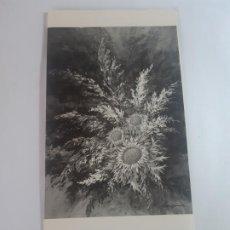 Arte: EXPOSICION JOSEP SABANES. Lote 199483141